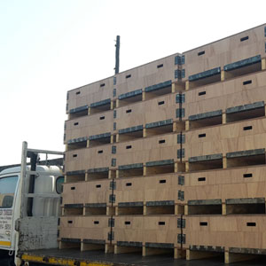 Marine Ply Specialised Boxes